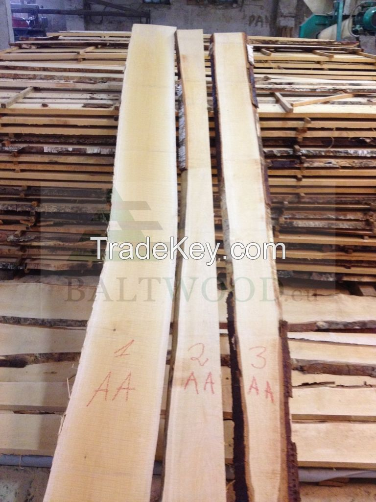AA Quality White Birch Timber