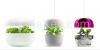 Plantui smart garden s...