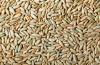 Wholesale rye