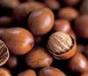 Shea Nuts, Roasted Nut...