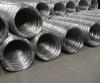 Galvanized Oval Steel ...