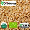 Quinoa (white, red, bl...