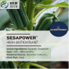 Sesame Seed Extract Se...