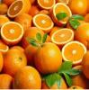 Valencia Oranges - Ora...