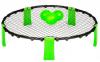 Spikeball Nets system