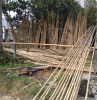 Natural Bamboo Canes/B...