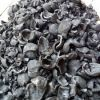 candlenut shell charcoal