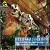 Dinosaurs skeleton models