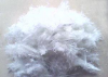 Brucite fiber