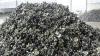 Selenium scrap
