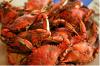 Shrimps Red Crabs