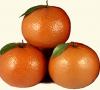 FRESH MANDARINS, FRESH KINNO, FRESH KINNOW