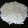 Acrylic staple fiber