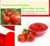 TOMATO PASTE FROM CHINA