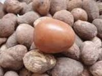 SHEA NUTS (VITELLARIA)