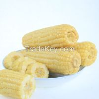 High quality Waxy corn for eating