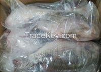 Cheap Frozen Tilapia Fish for sale
