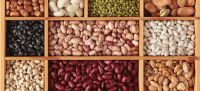 Dried Beans / Light Red Speckled Kidney Bean