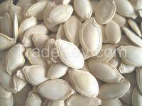 pumpkin kernels from