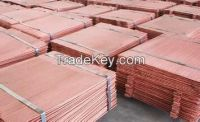 Supply best quality electrolytic copper cathodes 99.99%