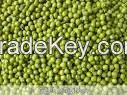 WHITE,RED,GREEN MUNG BEANS AND WHITE SPECKLED KIDNEY BEANS FOR SALE