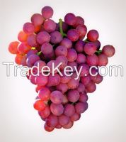 Grapes Fresh Flame seedless