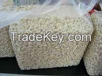 Raw Raw cashew nuts for sale