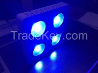 2015 New Design Factory Price 336W COB LED Grow Lights China With COB LED Chips Indoor Grow Room 2 Warranty years Fast Shipping
