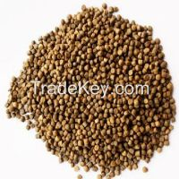 Floating fish feed for tilapia, catfish, seabass