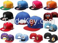 all kinds of license cap