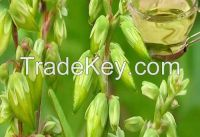 Buckwheat Oil Natural Herbal Oils