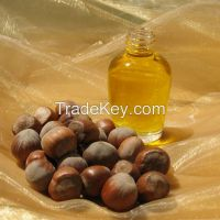 Cold Press Hazelnut Oil Manufacturer Best Price