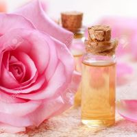 Turkish Rose Oil Rose Essential Oil / Rose Damask Oil / Oleum Rose Damascena