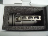 HID Diving Torch