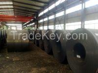 PPGI/Hot Dipped Galvanized Steel Coil/Sheet/Plate/Strip