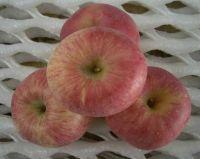 GALA and fuji apple