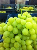 fresh grapes - flame  grapes - superior grapes