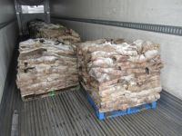 Wet And Dry Salted Donkey Hides, Cow Hides, Horse Hides