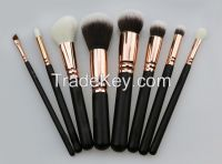 Professional Brush Collection Set