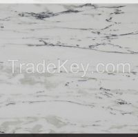 Italy New Calacatta Marble Slab for Building