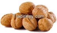 Almond nuts   Cashew nuts