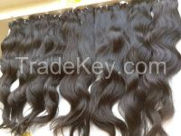 Vietnamese best wholesale price for 100% natural wavy/curly weft hair 10- 30 inches with highest quality