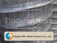 Galvanized Welded Wire Mesh Rolls & Panels