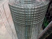 Customized Application Welded Wire Mesh Rolls