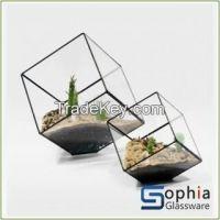 terrarium vases