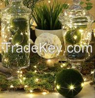 40LED String Lights with Bee for Spring, garden lights, underground lamps