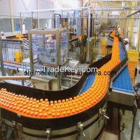 Complete Fruit Juice Production Line