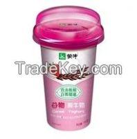 Complete Fresh Yoghurt Produce Turn-Key Project