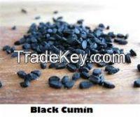 Selling Best Natural Black Cumin Seeds