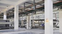 Calcium Lactate Food Grade By Shandong Baisheng Biotechnology Co.ltd